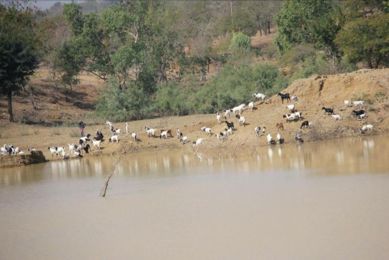 Il corso del fiume è stato deviato verso i villaggi per la creazione di un bacino d'acqua