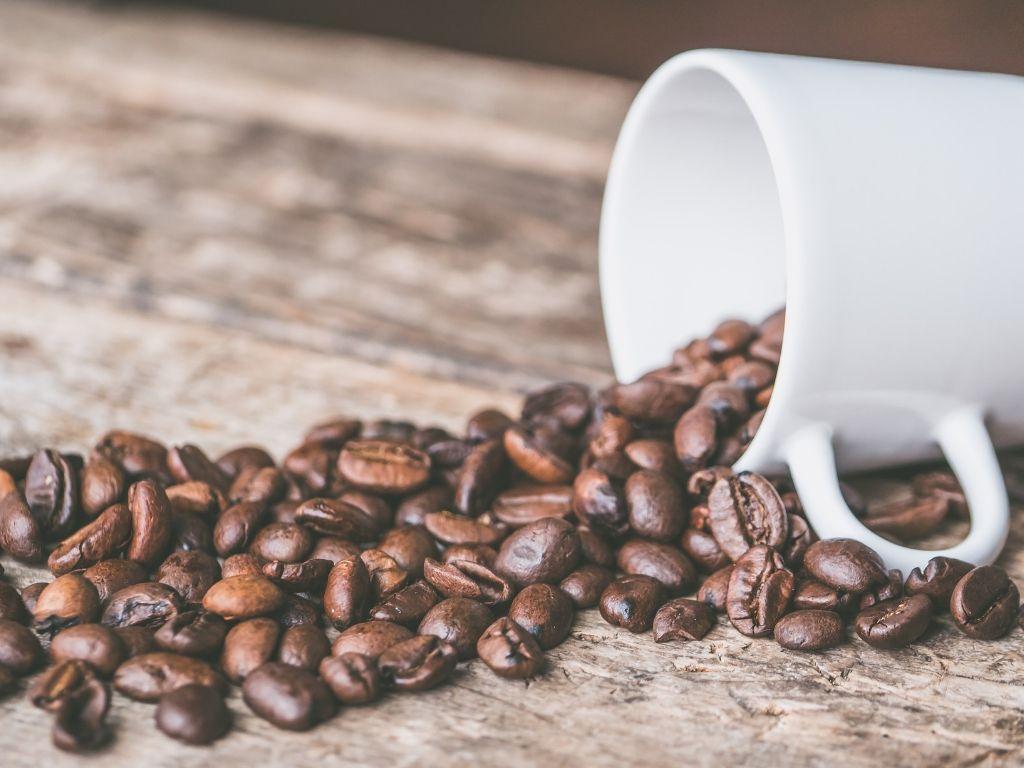 Viaggio di lavoro - caffè più buono di roma